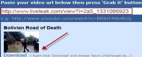 grab liveleak video process
