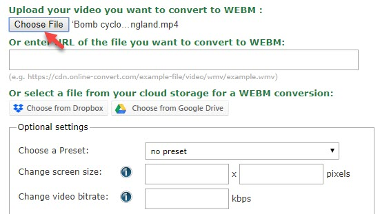 Choose file to convert