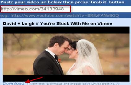 free way to grab vimeo video