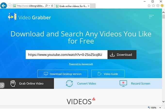 IE-video-grabber